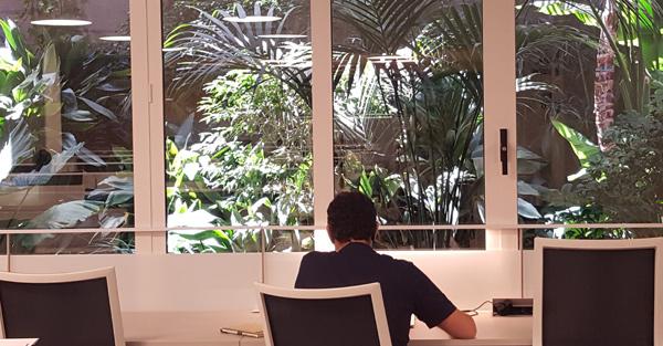 library_bcn__internship_600x313.jpg